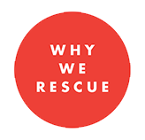 why we rescue