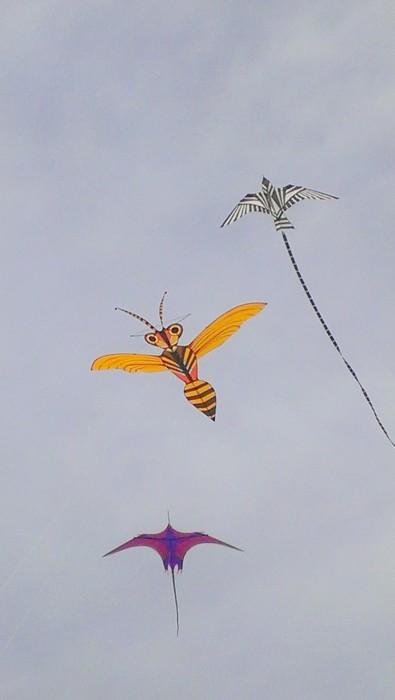 SkyBirds+Bee