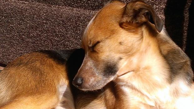 charlie.sunbath