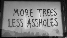 moretrees
