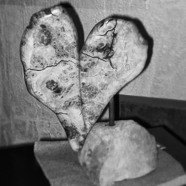 Burlwood Heart, Sculpture by Anne Shutan