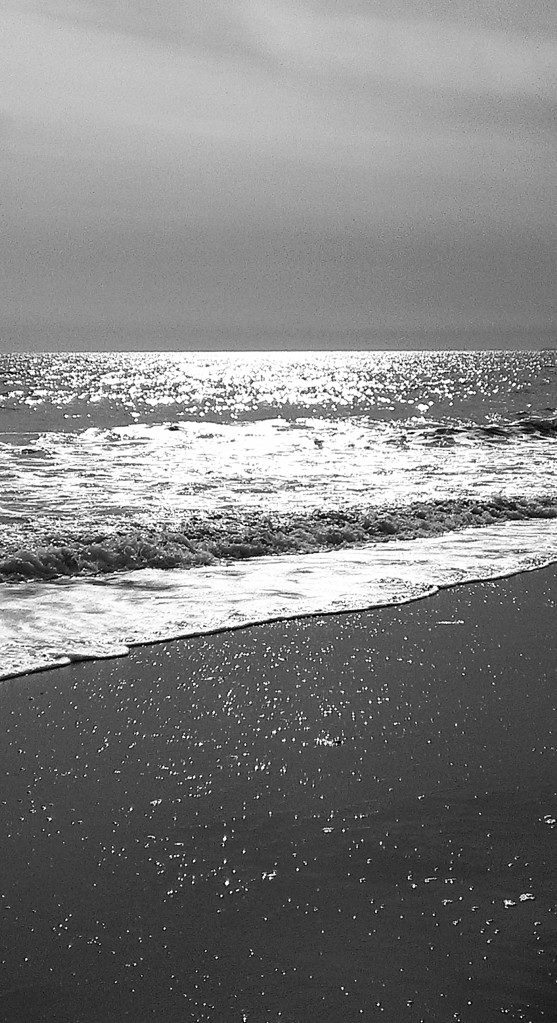 The Silvery Sea, Santa Monica